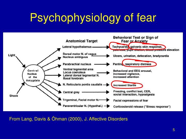 Psychophysiology of fear