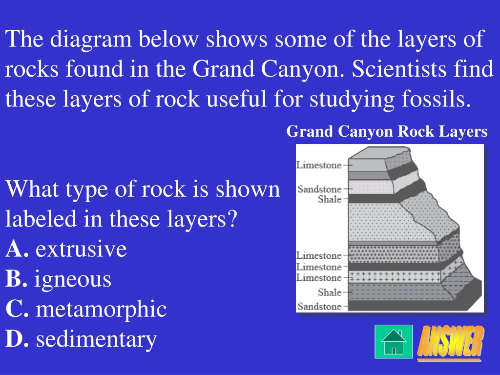 The diagram below shows some of the layers of rocks found in the Grand Canyon. Scientists find these layers of rock useful for studying fossils.