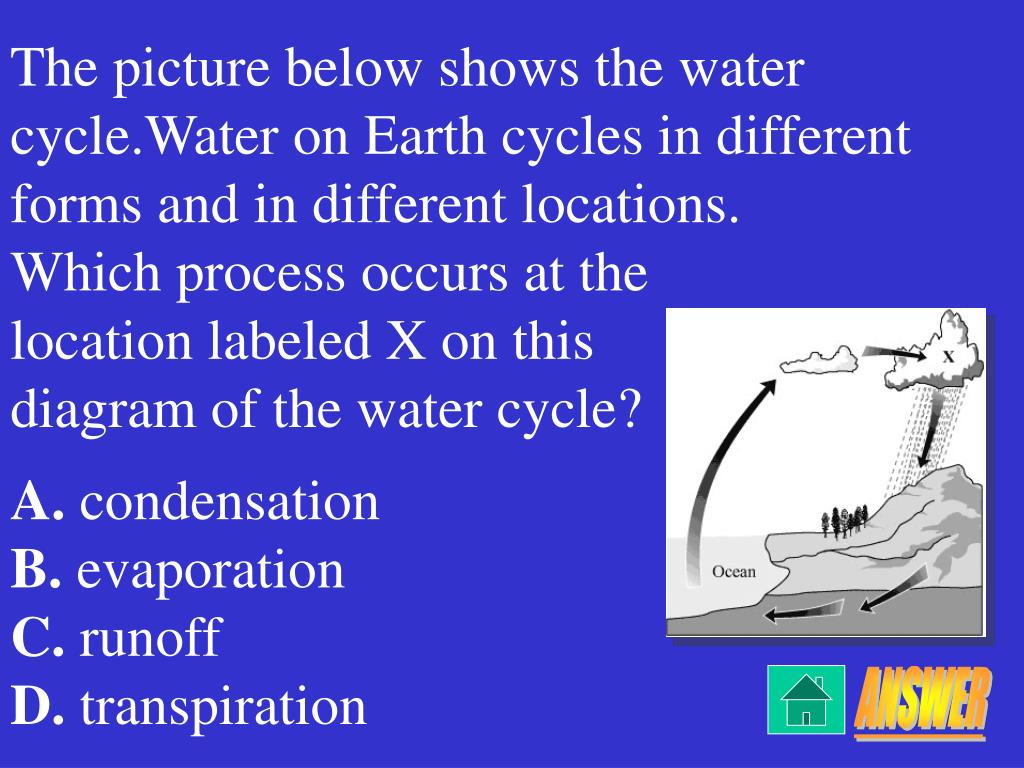 The picture below shows the water cycle.Water on Earth cycles in different forms and in different locations.