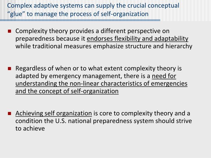 """Complex adaptive systems can supply the crucial conceptual """"glue"""" to manage the process of self-organization"""