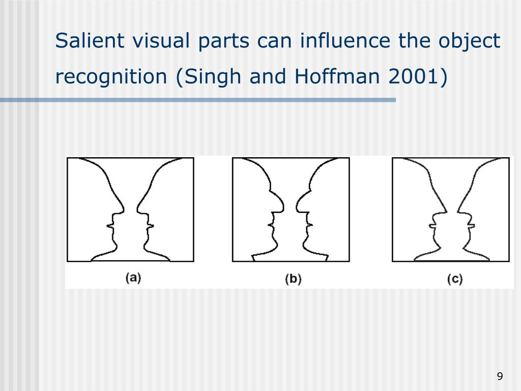 Salient visual parts can influence the object recognition (Singh and Hoffman 2001)