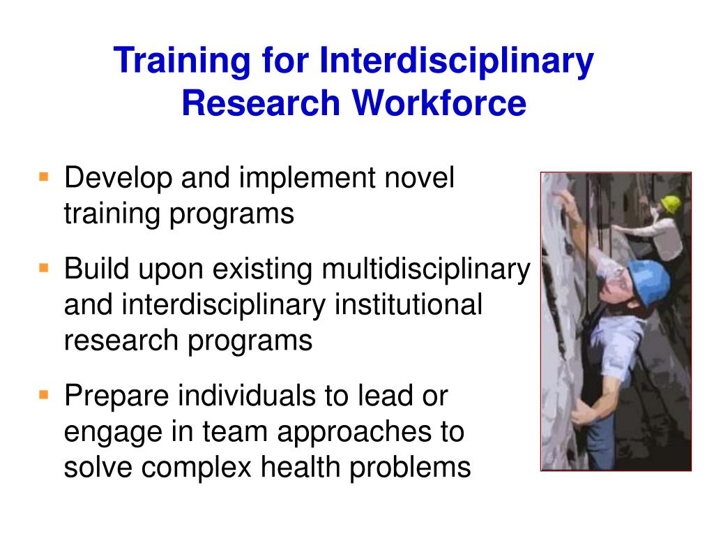 Training for Interdisciplinary Research Workforce