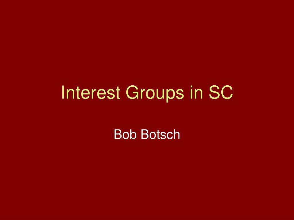interest groups in sc l.