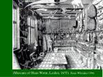 museum of olaus worm leiden 1655