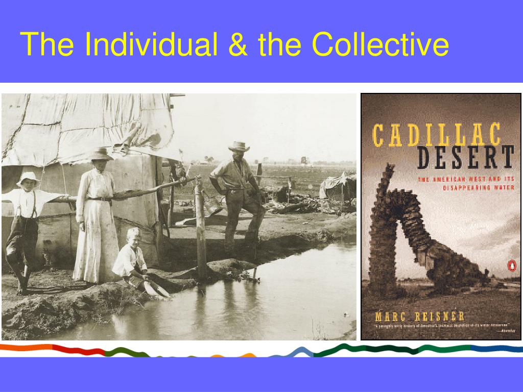 The Individual & the Collective