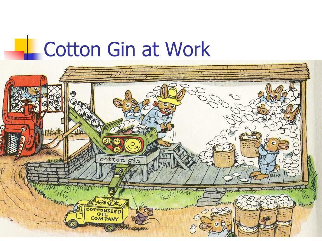 Cotton Gin at Work