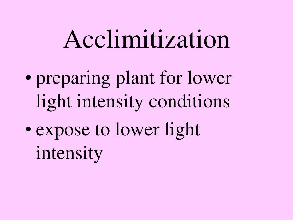 Acclimitization