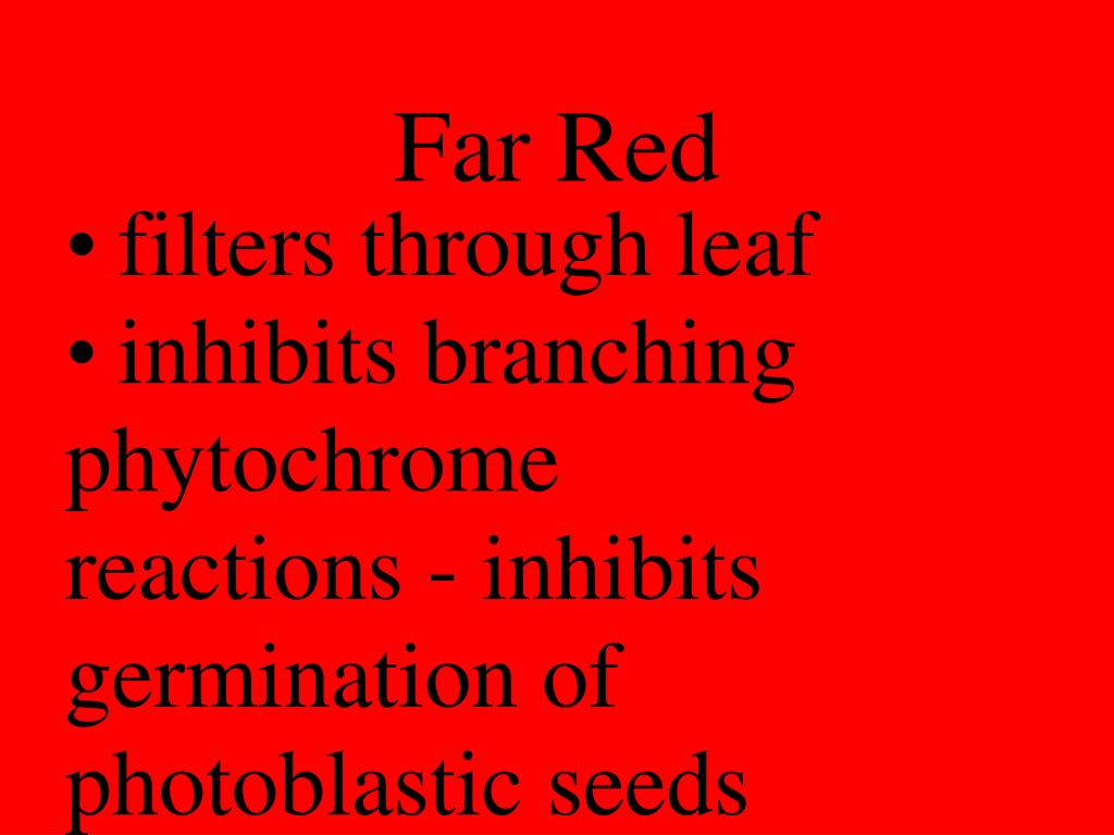 Far Red