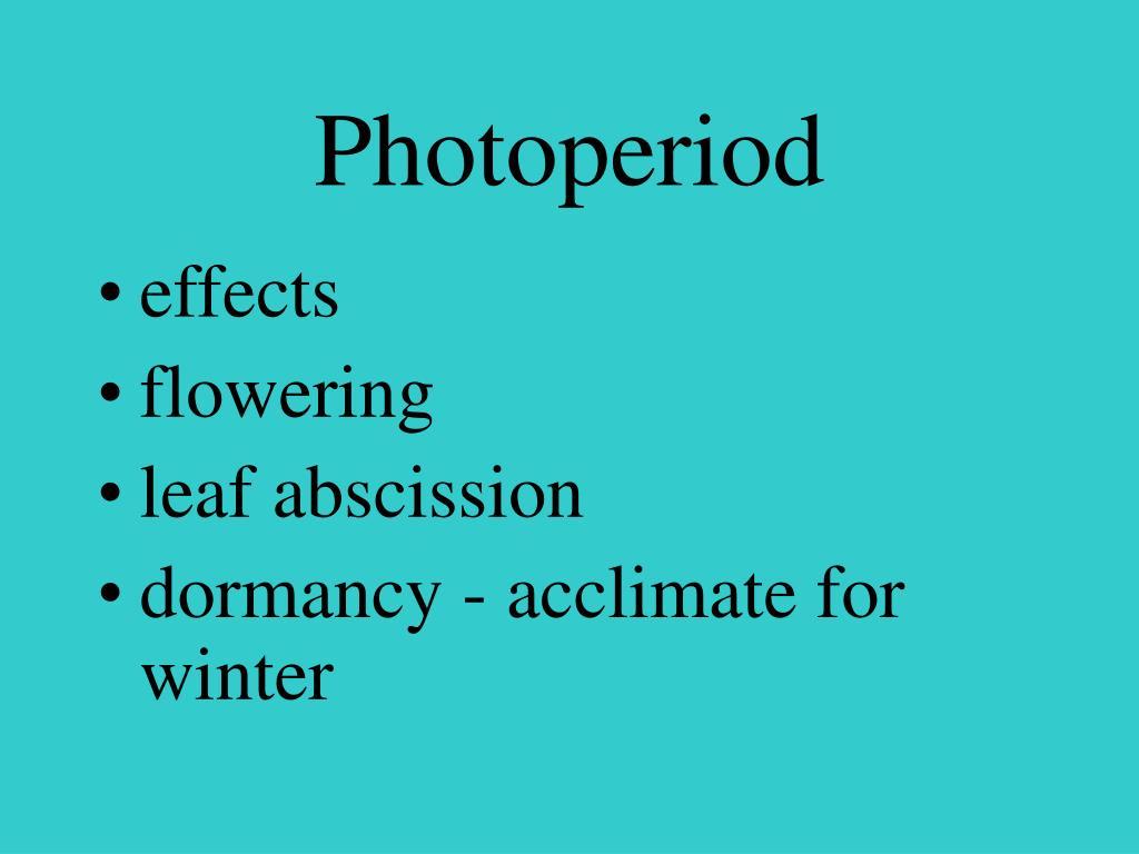 Photoperiod