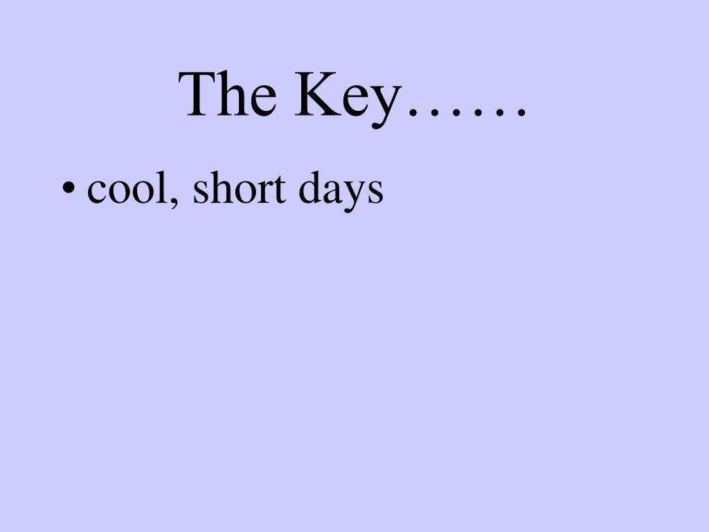 The Key……