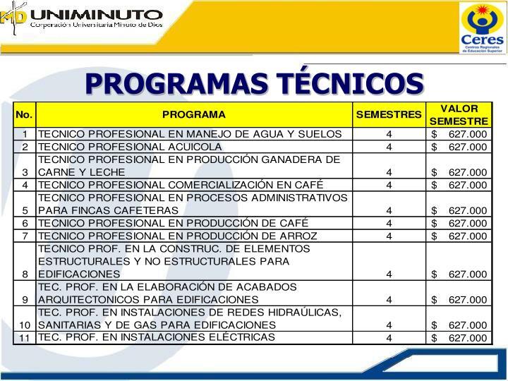 Programas t cnicos