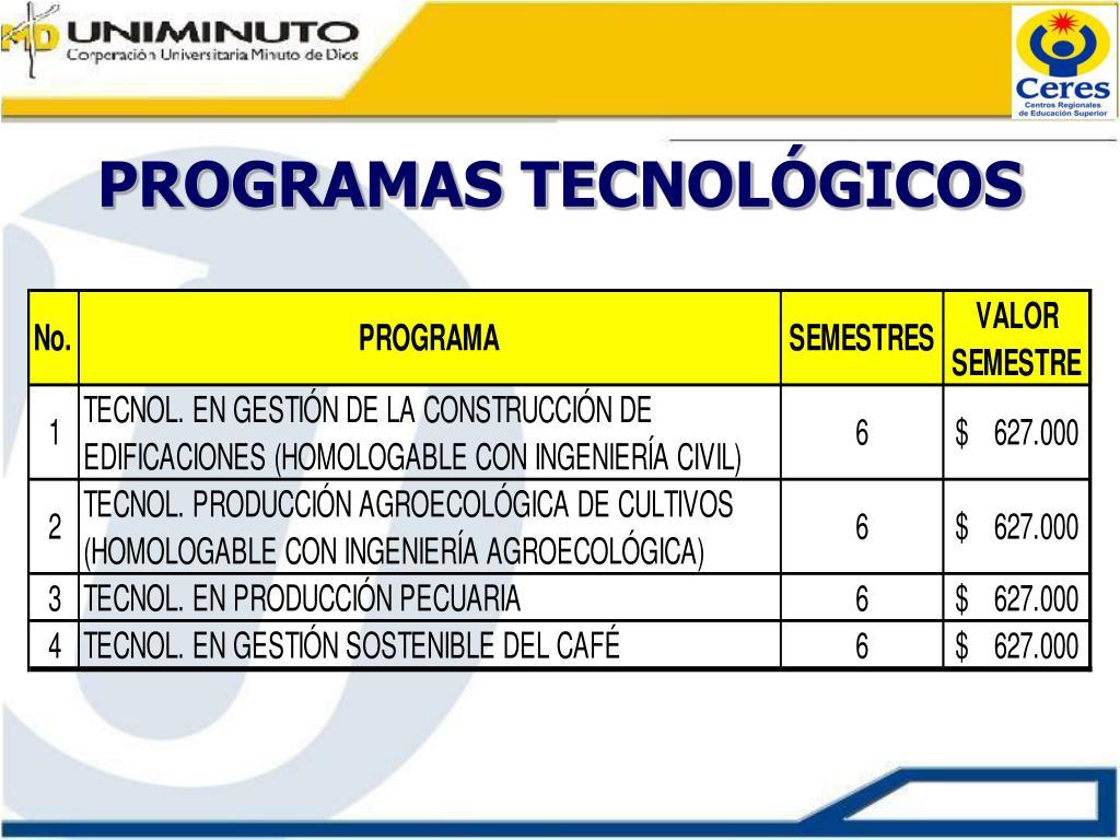 PROGRAMAS TECNOLÓGICOS