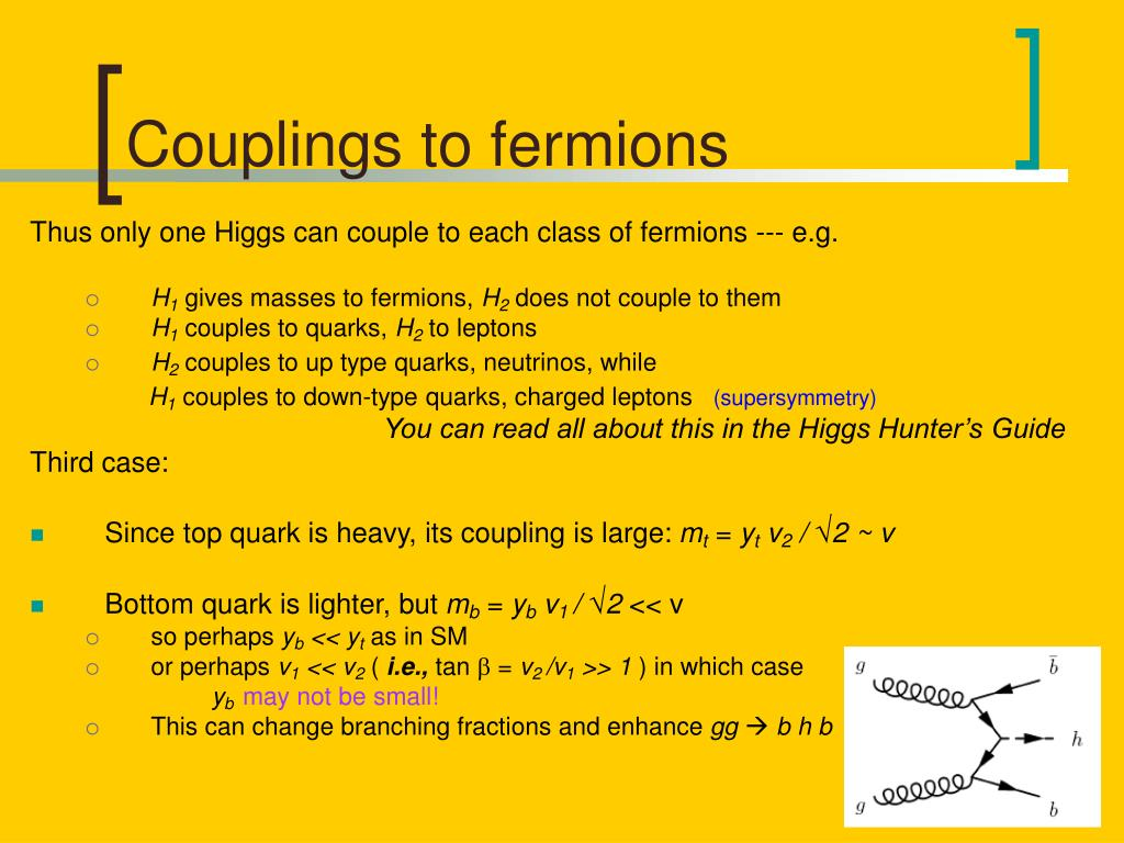 Couplings to fermions
