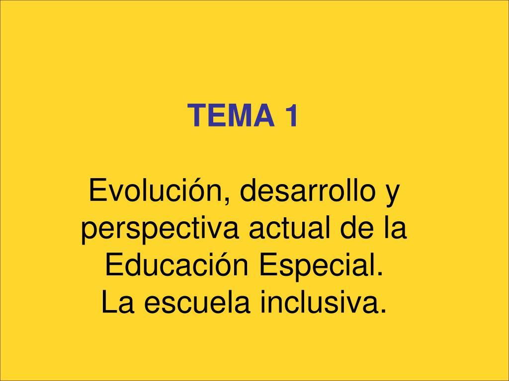 tema 1 evoluci n desarrollo y perspectiva actual de la educaci n especial la escuela inclusiva l.