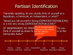 partisan identification