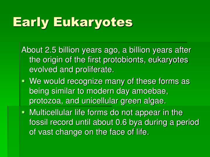 Early Eukaryotes