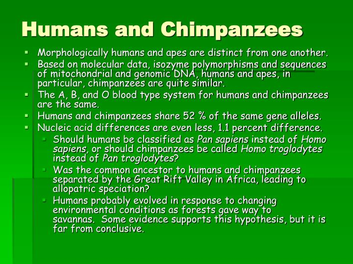 Humans and Chimpanzees