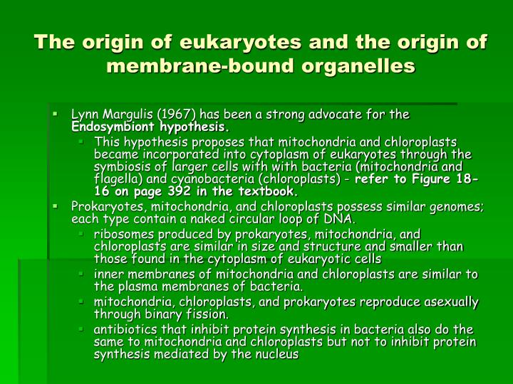 The origin of eukaryotes and the origin of membrane-bound organelles