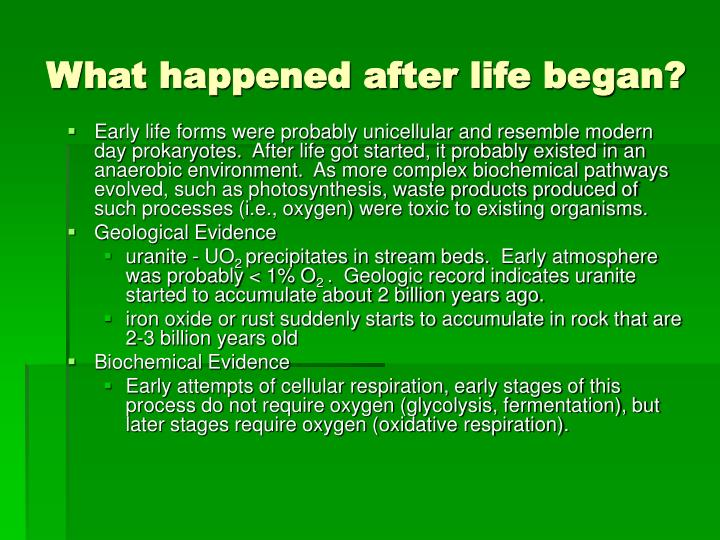 What happened after life began?