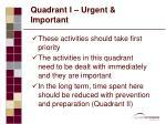 quadrant i urgent important