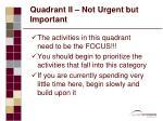quadrant ii not urgent but important