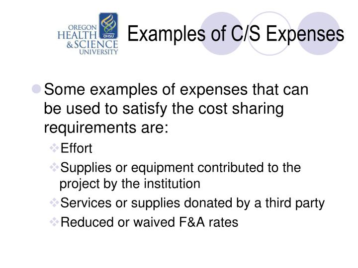 Examples of C/S Expenses