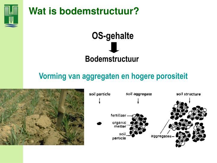 Wat is bodemstructuur?