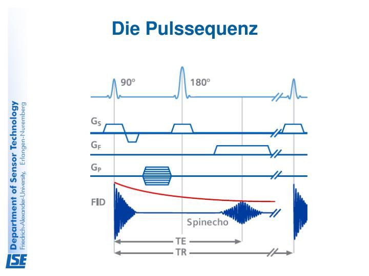 Die Pulssequenz