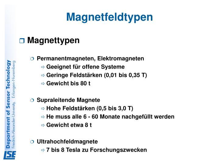 Magnetfeldtypen