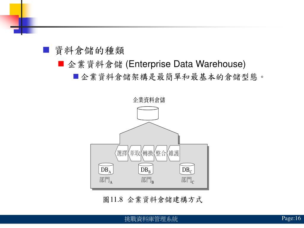 資料倉儲的種類