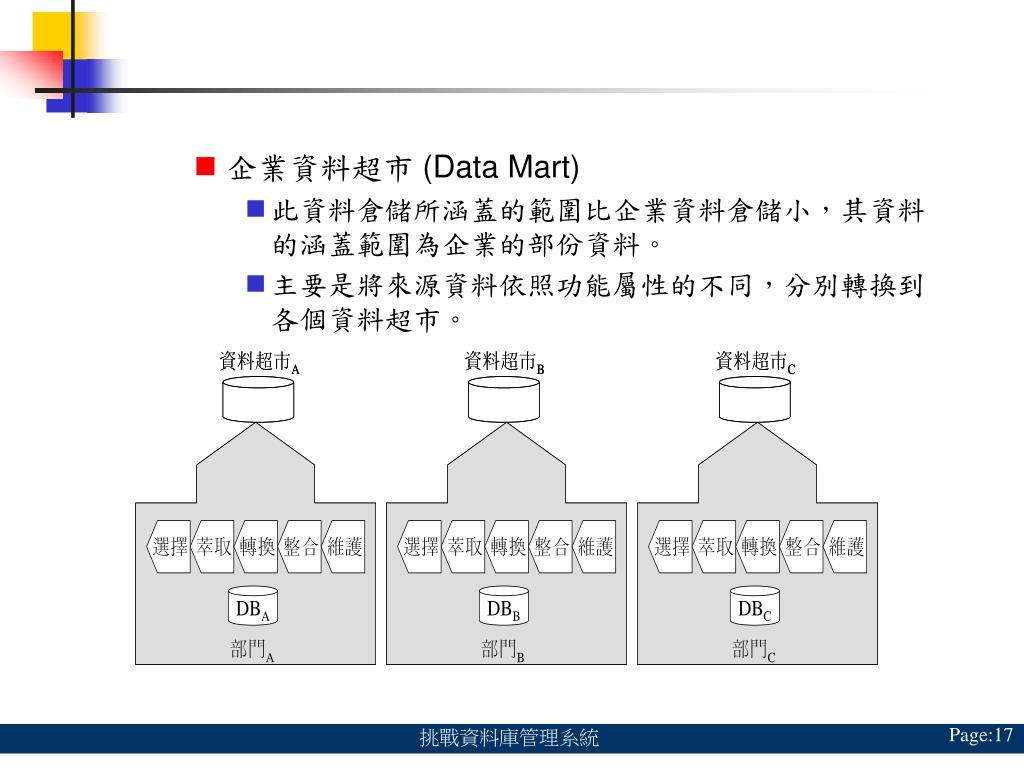 企業資料超市 (Data Mart)
