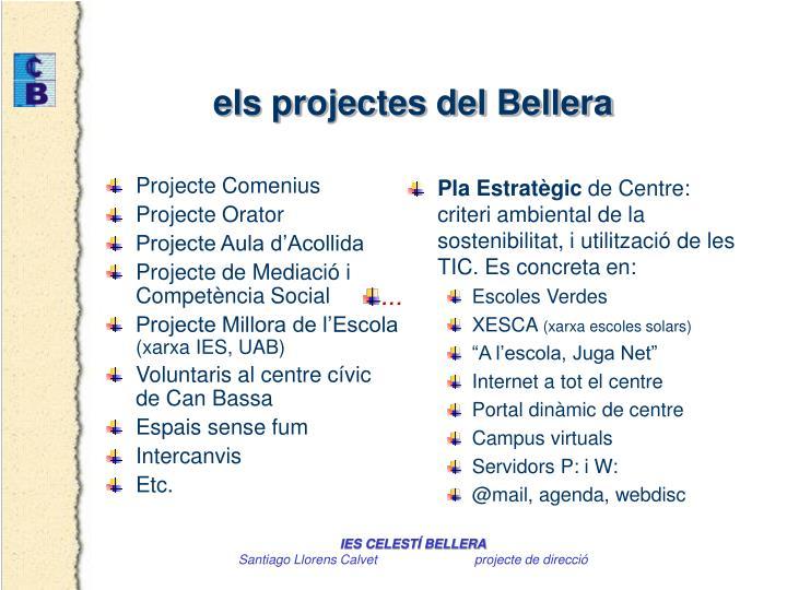 Projecte Comenius