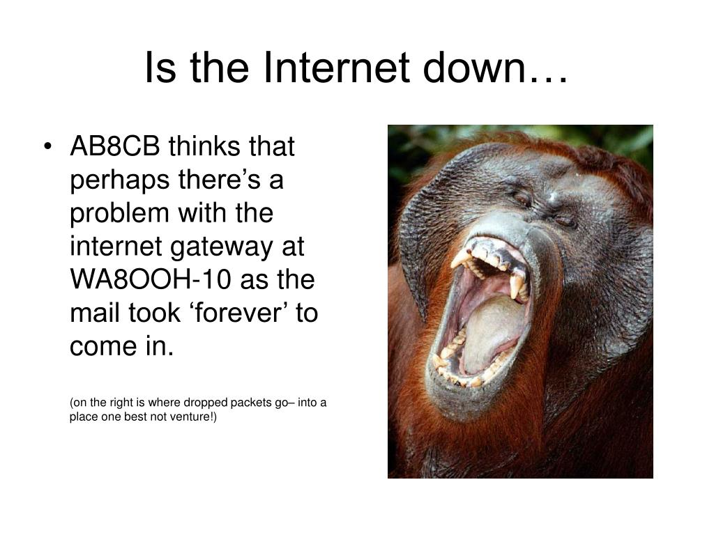Is the Internet down…