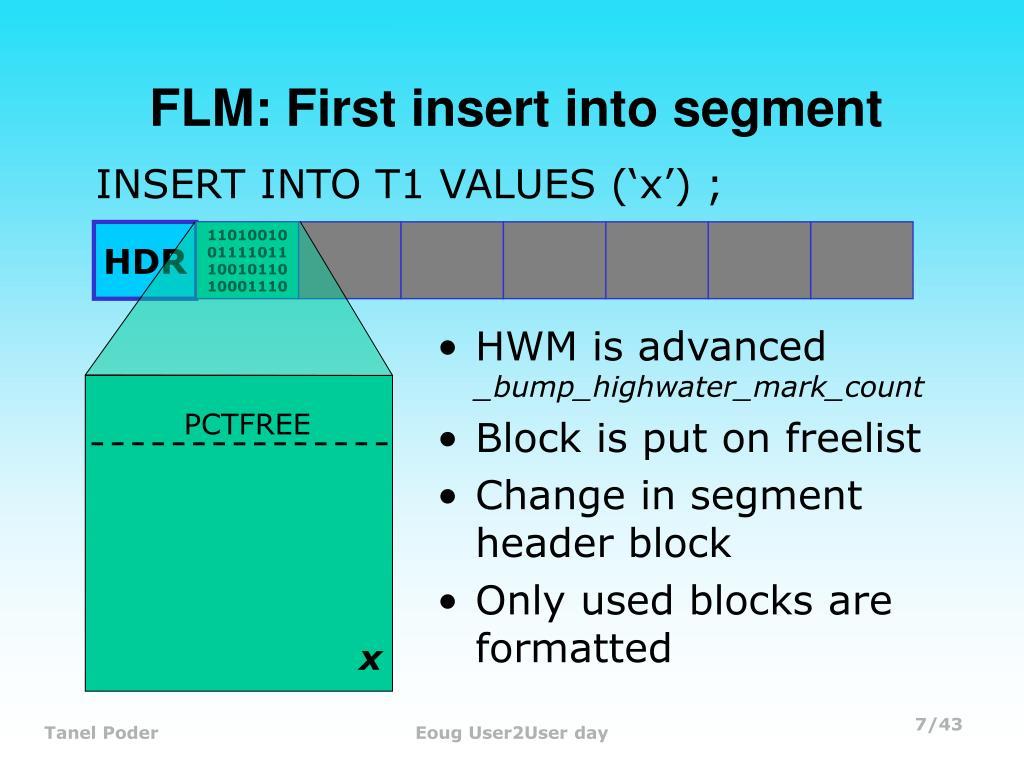 FLM: First insert into segment