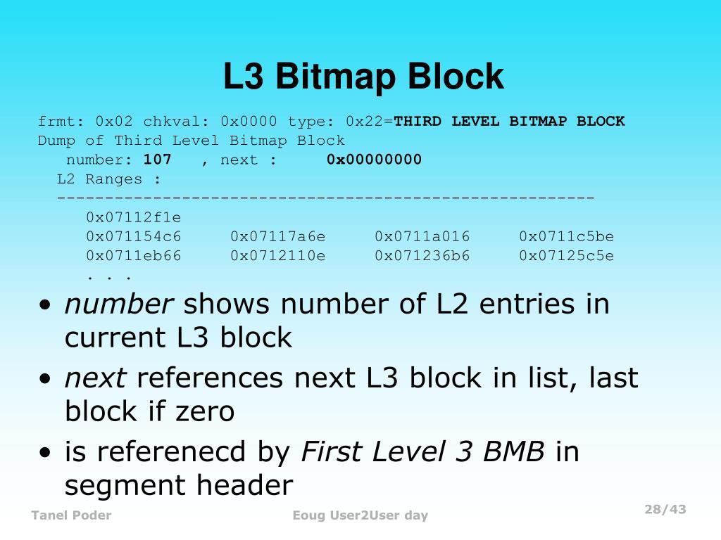 L3 Bitmap Block