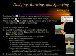dodging burning and sponging images