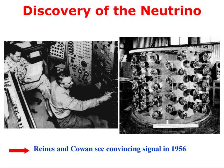 Discovery of the Neutrino