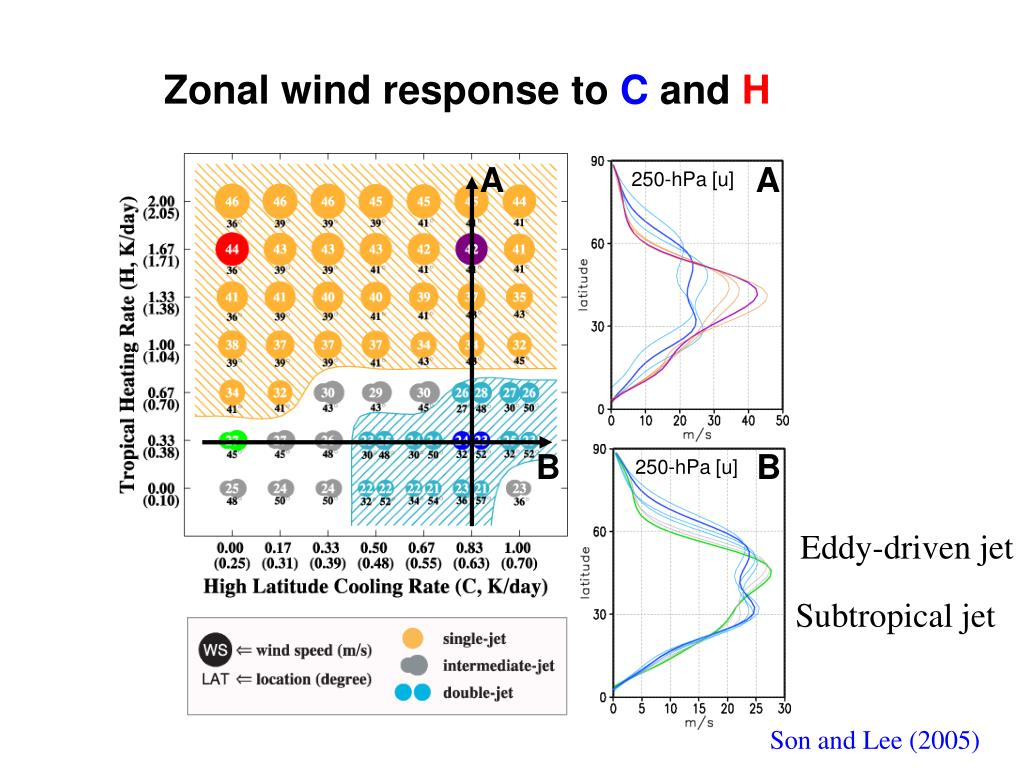 Zonal wind response to