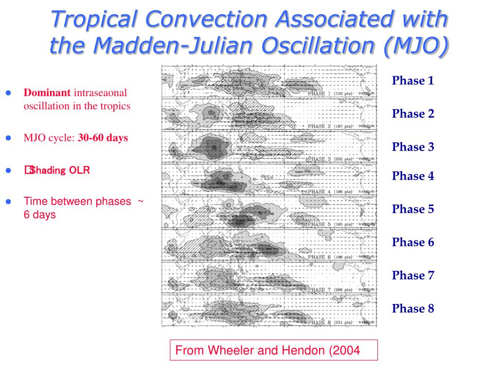 Tropical Convection Associated with the Madden-Julian Oscillation (MJO)
