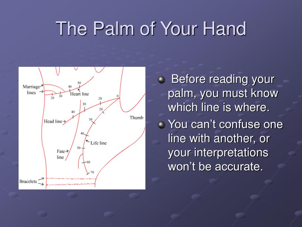 The Palm of Your Hand