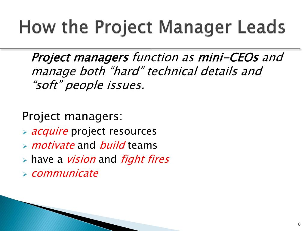 How the Project Manager Leads