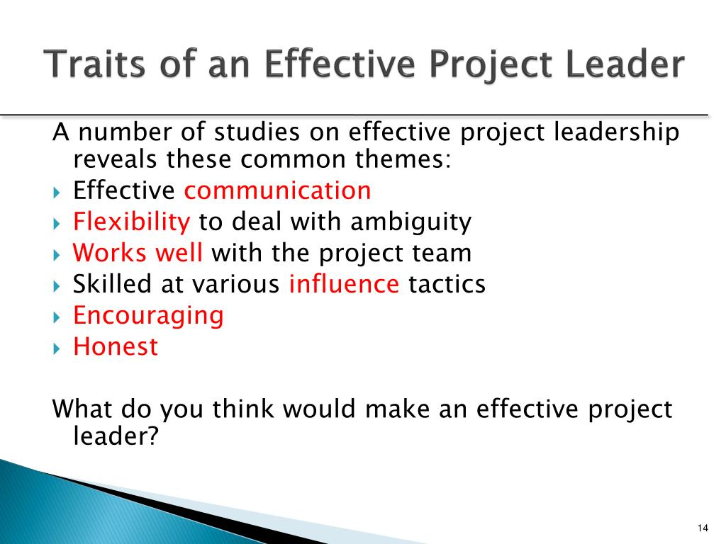 Traits of an Effective Project Leader