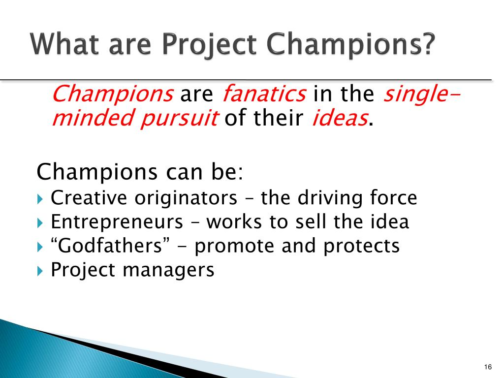 What are Project Champions?