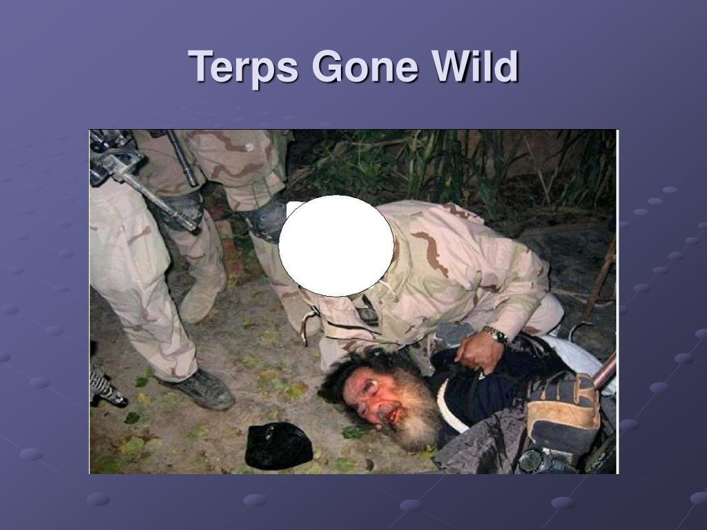 Terps Gone Wild
