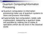 quantum computing information processing