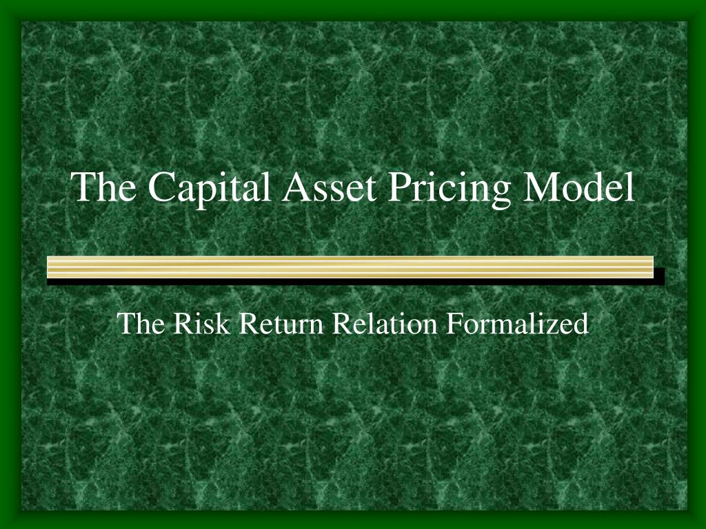 the capital asset pricing model l.
