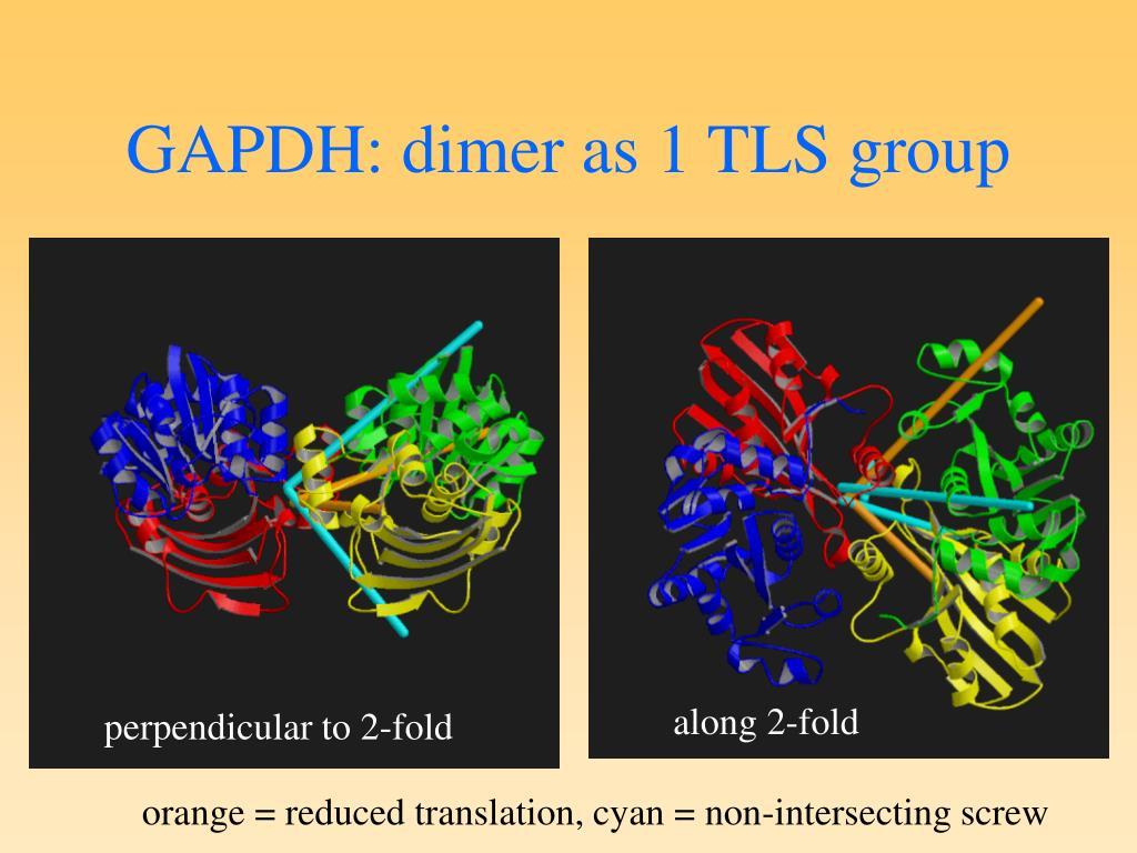 GAPDH: dimer as 1 TLS group