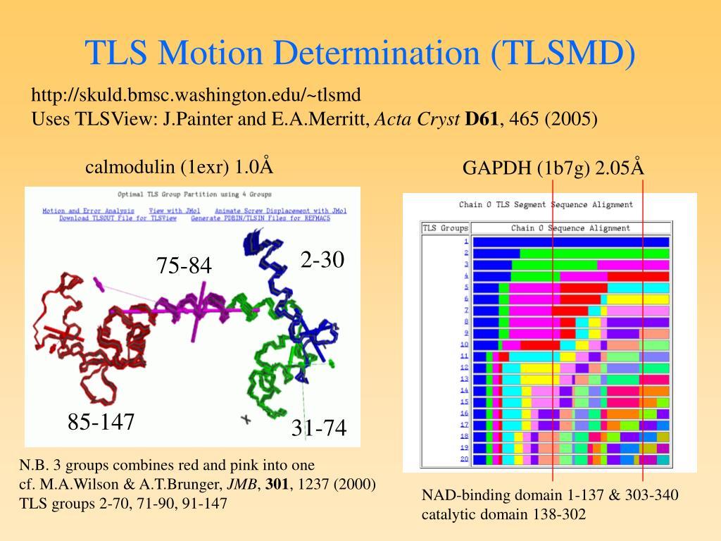 TLS Motion Determination (TLSMD)