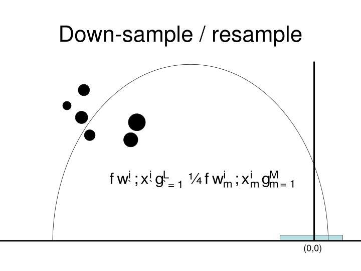 Down-sample / resample