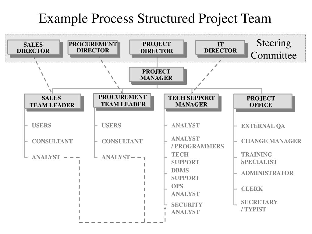 example process structured project team l.